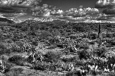 Photograph - Four Peaks  by Roger Passman