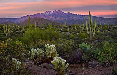 Snow-covered Landscape Photograph - Four Peaks Sunset by Dave Dilli