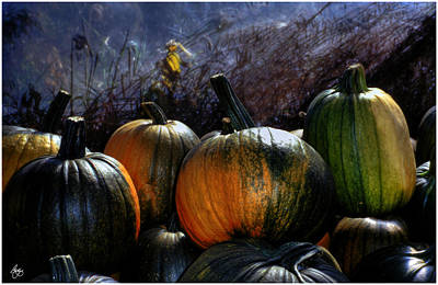Photograph - Four Pumpkins by Wayne King