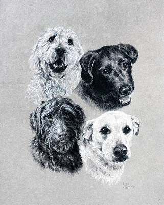 Drawing - Four Pups by Risa Kent