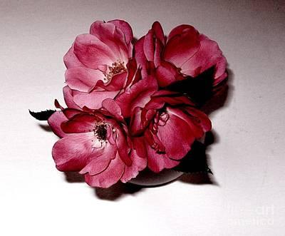 Four Roses Art Print by Marsha Heiken