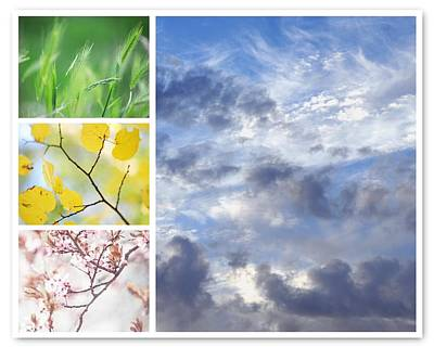 Photograph - Four Seasons Collage. Winter Sky by Jenny Rainbow