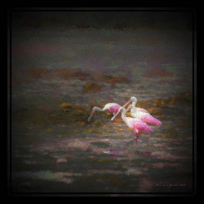 Spoonbill Wall Art - Photograph - Four Spoons On The Marsh by Marvin Spates