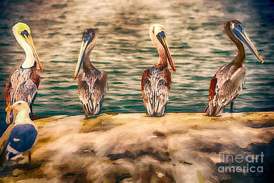Pelican Painting - Four Stooges by David Millenheft