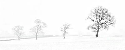 Trees In Snow Photograph - Four Trees Farndale by Janet Burdon