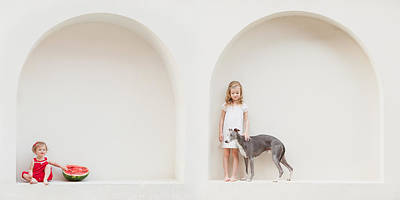 Whippet Photograph - Four Years Passed... by Eva Miliuniene