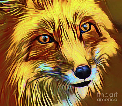 Photograph - Fox 20218 by Ray Shrewsberry