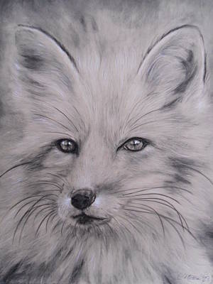 Fox Art Print by Adrienne Martino