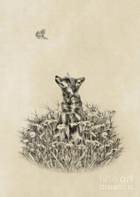 Digital Art - Fox And Butterfly by Olga Hamilton