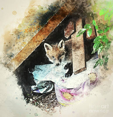 Photograph - Fox Cub One Of Seven by Jack Torcello