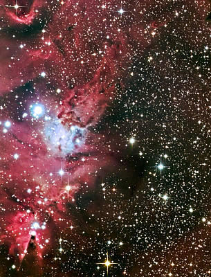 Photograph - Fox Fur Nebula by Jim DeLillo