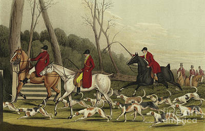 Horseman Drawing - Fox Hunting Going Into Cover by Henry Thomas Alken