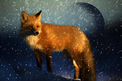 Photograph - Fox In A Midnight Blizzard by Ericamaxine Price