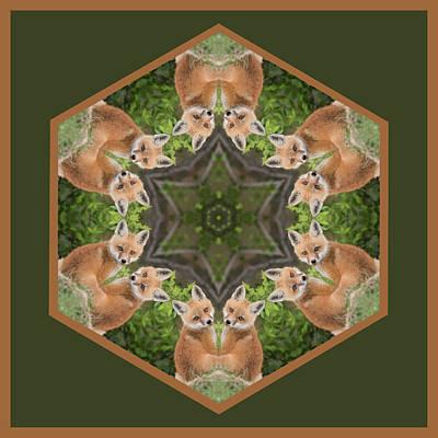 Fox Kit Star Print by Rhoda Gerig