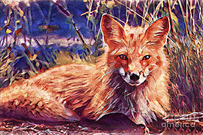 Painting - Fox by Lita Kelley