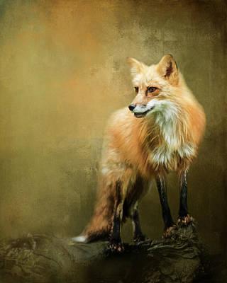 Fox Digital Art - Fox On A Log by Susan Carter