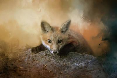 Fox On The Rocks Art Print