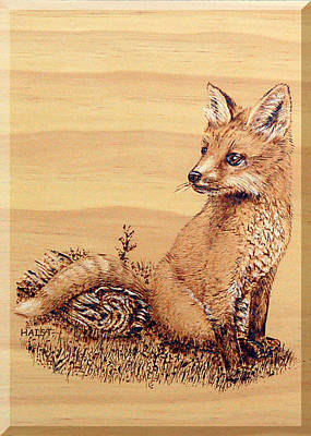 Pyrography - Fox Pup by Ron Haist