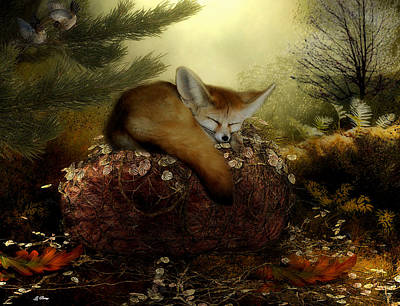 Fox Sound Asleep Art Print