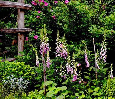 Painting - Foxglove Garden by Renate Nadi Wesley