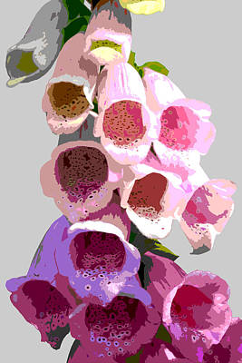 Digital Art - Foxglove by Mary Castellan