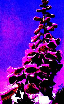 Art Print featuring the painting Foxglove by Renate Nadi Wesley