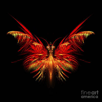 Apophysis Digital Art - Fractal Butterfly by John Edwards