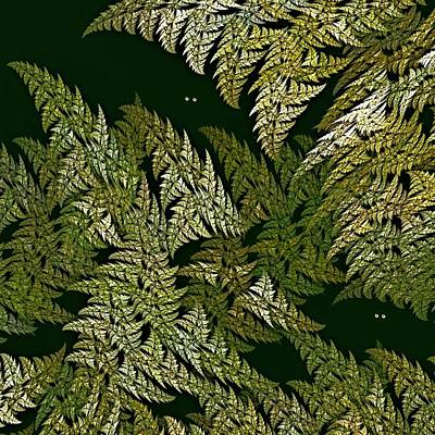 Digital Art - Fractal Ferns Queensland by Doug Morgan