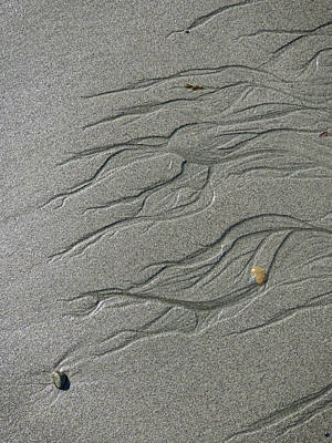 Photograph - Fractal River In The Sand by Bud Simpson