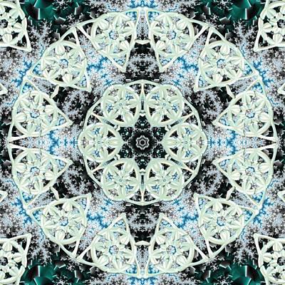Digital Art - Fractal Trinomoly by Derek Gedney