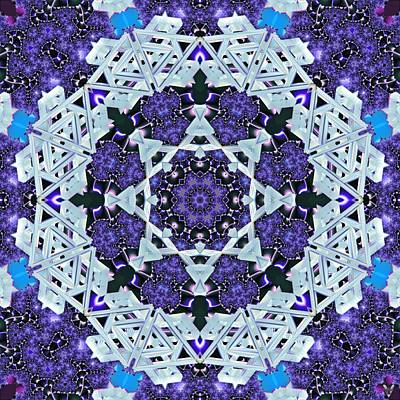 Digital Art - Fractal Vortex Energy by Derek Gedney