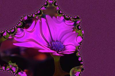 Abstract Flowers Royalty-Free and Rights-Managed Images - Fractual Flower  by Jeff Swan