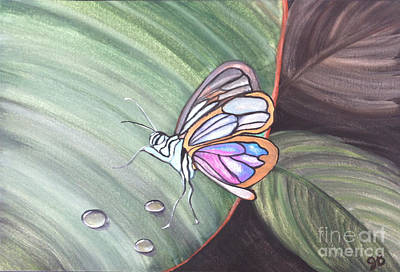 Fragile Flutters Original