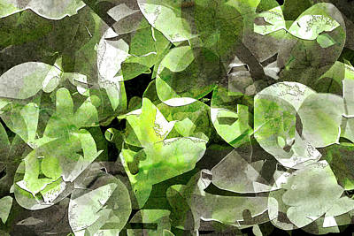 Photograph - Fragmented Orchid Petals by Don Gradner