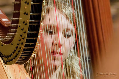 Photograph - Framed By A Harp by Ronald Hoehn