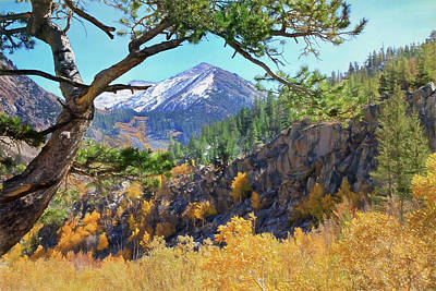 Mammoth Photograph - Framed By Nature by Donna Kennedy