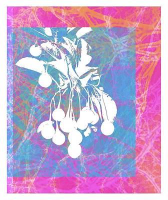 Digital Art - Framed Cherries by Cecilia Swatton