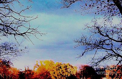 Wrap Digital Art - Framed Fall Trees by Marsha Heiken