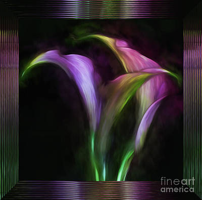 Photograph - Framed Lavender Calla Lilies by Shirley Mangini