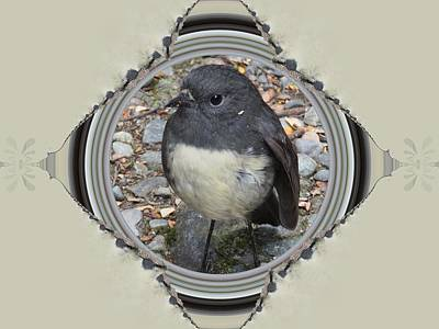 Mixed Media - Framed N.z. Bush Robin by Nancy Pauling