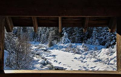 Photograph - Framed Snow by Perggals - Stacey Turner