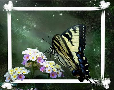 Photograph - Framed Swallowtail by Sandra Clark