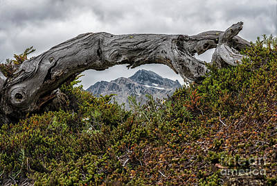 Photograph - Frame The Mountain by Joann Long