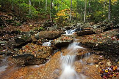 Photograph - Franconia Notch State Park by Juergen Roth
