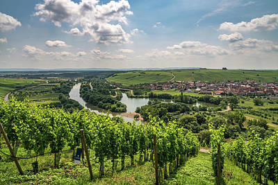 Photograph - Franconian Vineyards by Framing Places