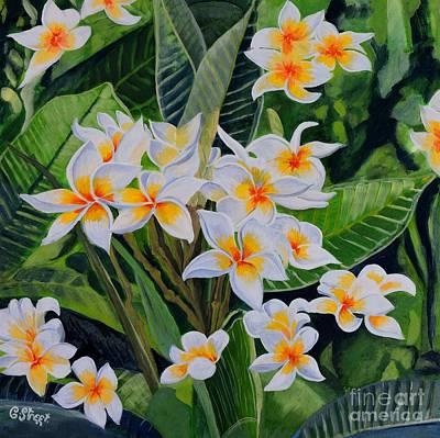 Painting - White Frangipani by Caroline Street