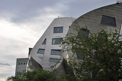 Photograph - Frank Gehry's Lou Ruvo Center Trees Side View by Matt Harang