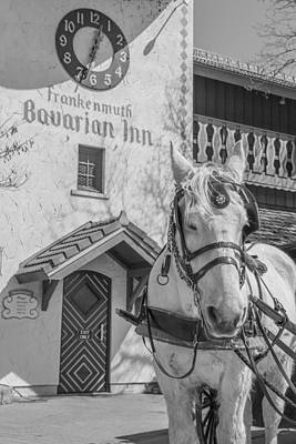 Michigan Frankenmuth Photograph - Frankenmuth And Horse by John McGraw