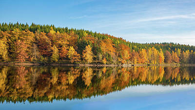 Photograph - Frankenteich, Harz by Andreas Levi