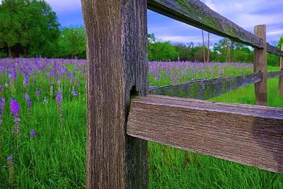 Photograph - Frankford Prairie 2 by John Babis